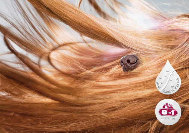 8in1 Hair Care for Dogs